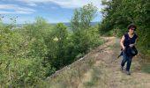 Trail Walk MURAT - Chastel-sur-Murat  - Photo 8