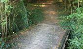 Randonnée Trail NEANT-SUR-YVEL - Autour des étangs à partir du gîte de tante Phonsine - Photo 12