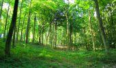 Randonnée Marche HARAMONT - en forêt de Retz_79_08_2019_vers Taillefontaine et Retheuil par les lisières - Photo 18