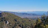 Randonnée Marche PLAN-D'AUPS-SAINTE-BAUME - source Huveaune, chemin des rois - Photo 6