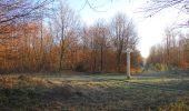 Trail Walk SAINT-JEAN-AUX-BOIS - en forêt de Compiègne_33_12_2019_les Tournantes de l'étang Saint-Jean et des Prés Saint-Jean - Photo 91