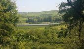 Trail Walk WASSELONNE - Geisweg - Elmerforst -Westhoffen - Photo 25