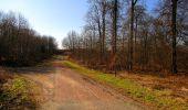 Trail Walk RETHEUIL - en forêt de Retz_76_dans les forêts de Retz et de Compiègne - Photo 133