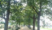 Randonnée Marche Wellin - RB-Lu-25_Jour 2_Au pays de Wellin-porte de l'Ardenne - Photo 3