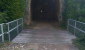 Randonnée Marche BESANCON - fort de la dame Blanche forêt de chailluz - Photo 3