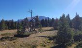 Randonnée Marche SAINT-AGNAN-EN-VERCORS - Pas des chatons  depuis la coche - Photo 4