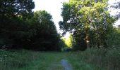 Trail Walk DAMPLEUX - en forêt de Retz_80_sur la Route Tortue et la Route Droite - Photo 70