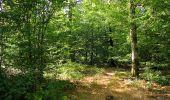 Trail Walk DAMPLEUX - en forêt de Retz_80_sur la Route Tortue et la Route Droite - Photo 306
