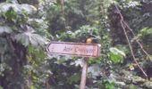 Randonnée Marche LE PRECHEUR - Cascade de la couleuvre - Photo 15