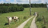 Randonnée Marche Gesves - Gesves - Photo 2