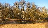 Randonnée A pied VILLERS-COTTERETS - le GR11A  dans la Forêt de Retz  - Photo 87