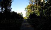 Trail Walk DAMPLEUX - en forêt de Retz_80_sur la Route Tortue et la Route Droite - Photo 136