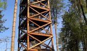 Randonnée A pied VILLERS-COTTERETS - le GR11A  dans la Forêt de Retz  - Photo 74