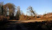 Trail Walk RETHEUIL - en forêt de Retz_76_dans les forêts de Retz et de Compiègne - Photo 36