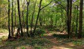 Randonnée Marche LONGPONT - en forêt de Retz_77_Longpont_Puiseux en Retz_AR - Photo 34