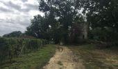Trail Walk SAINT-LAURENT-DES-COMBES - Saint Laurent des combes - Photo 6