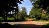 Randonnée Marche HARAMONT - en forêt de Retz_79_08_2019_vers Taillefontaine et Retheuil par les lisières - Photo 115