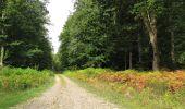 Randonnée Marche LONGPONT - en foret de Retz_ 41_Longpont_Vertes Feuilles_AR - Photo 140
