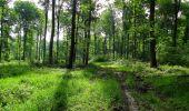 Randonnée Marche COYOLLES - en forêt de Retz_78_les rayons du Rond Capitaine - Photo 61