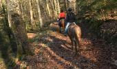 Randonnée Randonnée équestre FOUGEROLLES - Balade Le Sarcenot à pied 1h - Photo 1