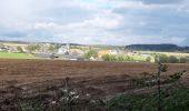 Trail Walk Andenne - sclaigneaux 1 - Photo 8