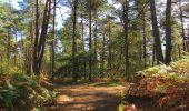 Trail Walk LONGPONT - en forêt de Retz_29_Longpont_la cave du Diable_A - Photo 41