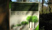 Randonnée Marche LONGPONT - en forêt de Retz_77_Longpont_Puiseux en Retz_AR - Photo 35