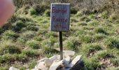 Randonnée Marche MARSANNE - Sentier des jonquilles  - Photo 1