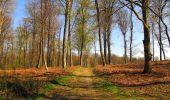 Randonnée A pied VILLERS-COTTERETS - le GR11A  dans la Forêt de Retz  - Photo 65