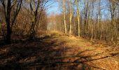 Trail Walk PIERREFONDS - en forêt de Compiègne_24_Tournantes sur le Voliard et sur la Fortelle_chaussée Brunehaut - Photo 61