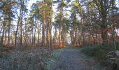 Trail Walk SAINT-JEAN-AUX-BOIS - en forêt de Compiègne_33_12_2019_les Tournantes de l'étang Saint-Jean et des Prés Saint-Jean - Photo 173