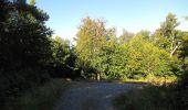 Trail Walk DAMPLEUX - en forêt de Retz_80_sur la Route Tortue et la Route Droite - Photo 60