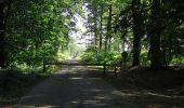 Trail Walk DAMPLEUX - en forêt de Retz_80_sur la Route Tortue et la Route Droite - Photo 240