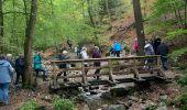 Randonnée Marche Aywaille - Ninglinspo - Photo 3