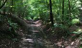 Randonnée Marche Havelange - Bois, Rivière et champs - Photo 2