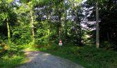 Randonnée Marche HARAMONT - en forêt de Retz_79_08_2019_vers Taillefontaine et Retheuil par les lisières - Photo 11