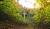 Randonnée Marche SAINT-JEAN-AUX-BOIS - en forêt de Compiègne_32_11_2019_les Tournantes de la Muette et sous la Tête Saint-Jean - Photo 171