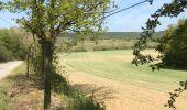 Randonnée Marche Rochefort - Croix du chariot vers Chapelle reine Astrid  - Photo 10