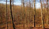 Trail Walk PIERREFONDS - en forêt de Compiègne_24_Tournantes sur le Voliard et sur la Fortelle_chaussée Brunehaut - Photo 45