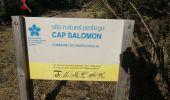Randonnée Marche LES ANSES-D'ARLET - cap salomon - Photo 11