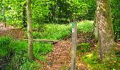 Randonnée A pied VILLERS-COTTERETS - le GR11A  dans la Forêt de Retz  - Photo 72