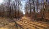 Trail Walk PIERREFONDS - en forêt de Compiègne_24_Tournantes sur le Voliard et sur la Fortelle_chaussée Brunehaut - Photo 133