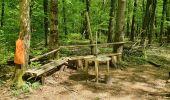 Trail Walk ETZLING -  balade etzling - Photo 2
