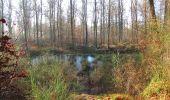 Trail Walk SAINT-JEAN-AUX-BOIS - en forêt de Compiègne_33_12_2019_les Tournantes de l'étang Saint-Jean et des Prés Saint-Jean - Photo 62