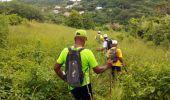 Trail Walk RIVIERE-SALEE - JOUBADIÈRE - MORNE CONSTANT - PAGERIE - Photo 38