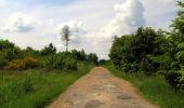 Randonnée Marche COYOLLES - en forêt de Retz_78_les rayons du Rond Capitaine - Photo 151