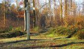 Trail Walk SAINT-JEAN-AUX-BOIS - en forêt de Compiègne_33_12_2019_les Tournantes de l'étang Saint-Jean et des Prés Saint-Jean - Photo 178