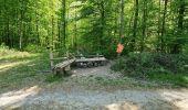Trail Walk ETZLING -  balade etzling - Photo 1