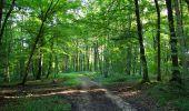 Randonnée Marche HARAMONT - en forêt de Retz_79_08_2019_vers Taillefontaine et Retheuil par les lisières - Photo 6