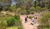 Randonnée Marche ROQUEBRUNE-SUR-ARGENS - z forêt de Raphèle 04-06-19 - Photo 2